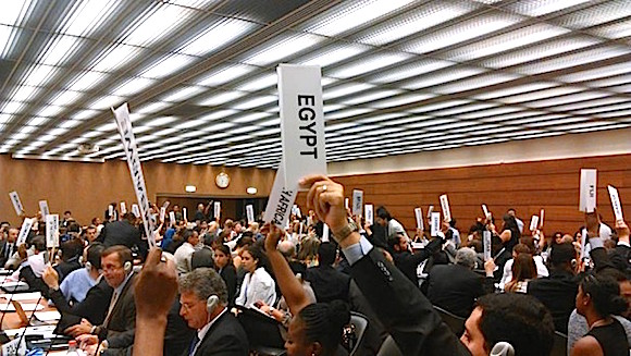 UN adopts OEWG nuclear resolution